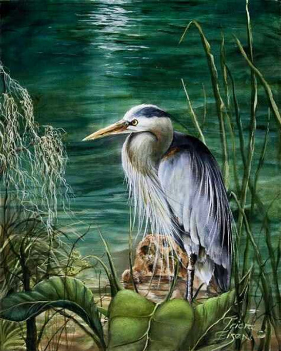 Great blue heron, large southern birds, grey bird.  heron, water, moon on water, reflections on the water