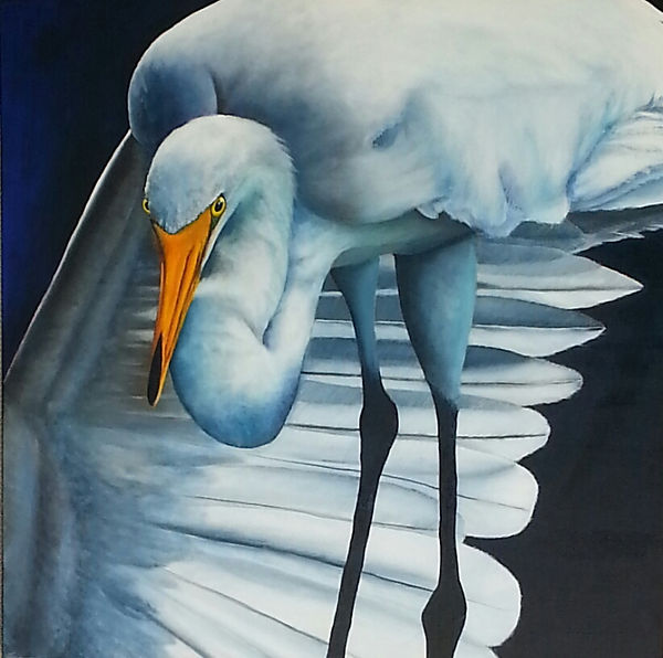 EGRET, WHITE BIRD, FLORIDA BIRD, WHITE EGRET, oil painting