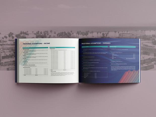 Venice Financial Analysis