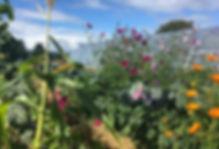 permaculture-ferme-biologique-haute-desn