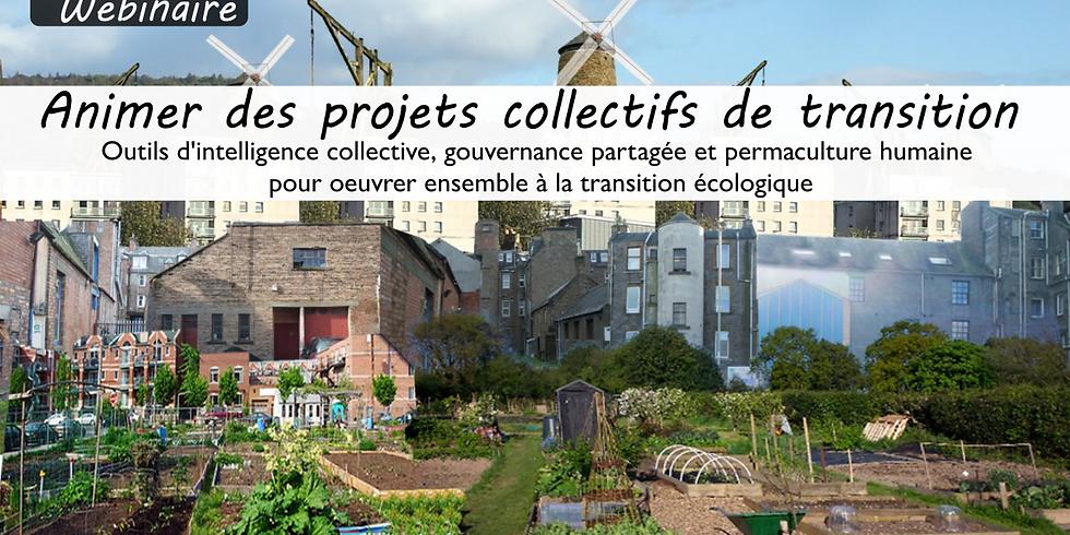 """Webinaire """"Animer des projets collectifs de transition"""""""