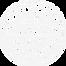 WSF logo white.png