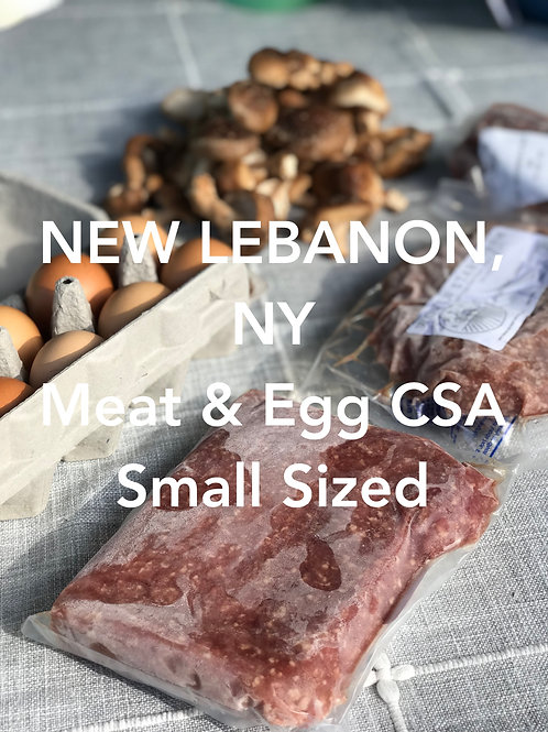Small CSA Share - NEW LEBANON PICKUP
