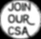 CSA circle.png