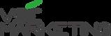 new_logo_vse.png
