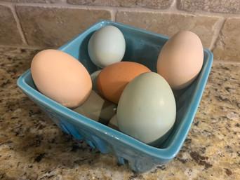 Fresh Farm Eggs