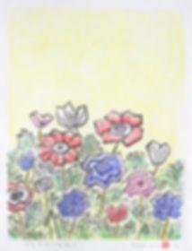 anemone_350.jpg