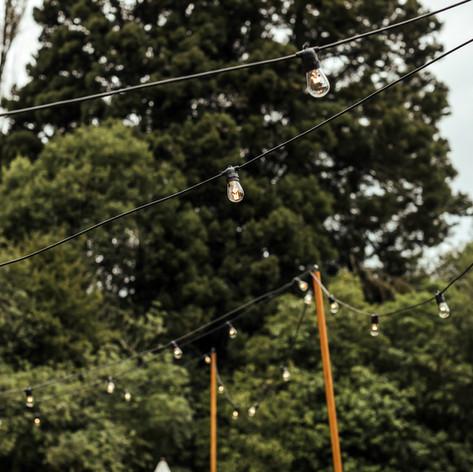 Festoons - festoon poles