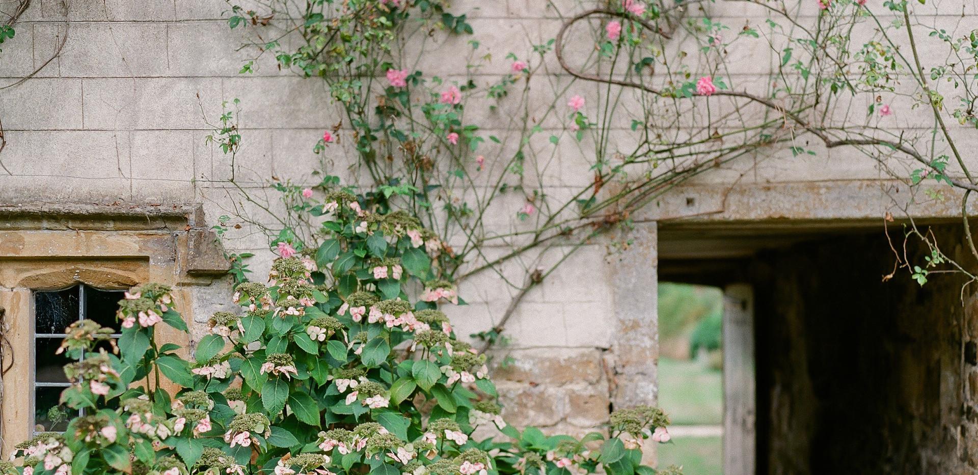 Beautiful door in the Ladies Garden