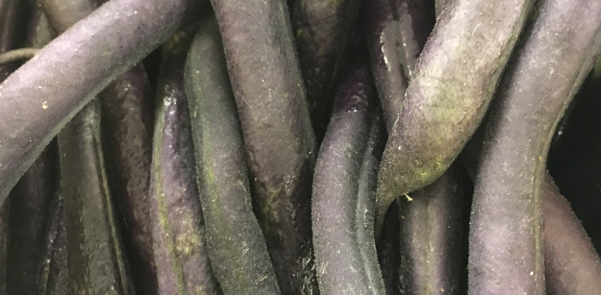 Purple String Beans.JPG