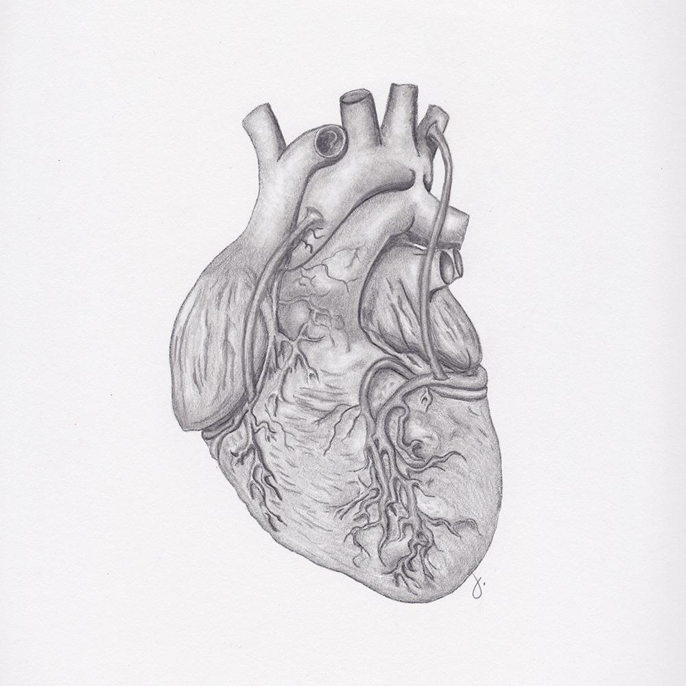 Repair Your Heart