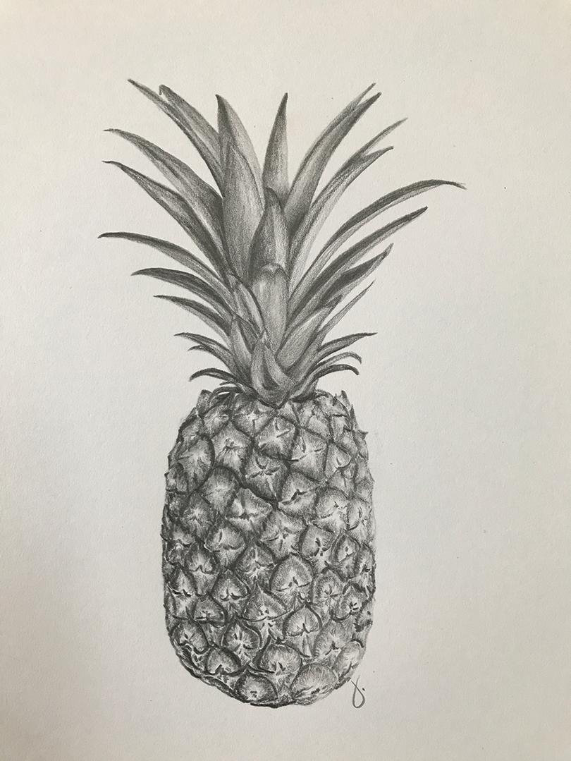 Pineapple (Hospitality) Illustration