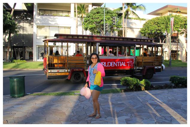 Honolulu Hawaii - USA