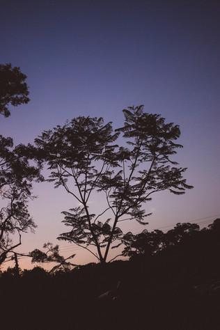 burringbartwo-19.jpg