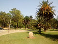 Litho 17 Marquise/Estac./Parque Ibirapuera