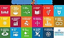 Geopuntura Lithopuntura 18 ações ODS Agenda 2030