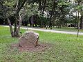Lithopuntura10 GCM/Parque Ibirapuera