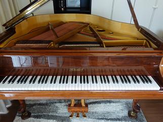 【《ピアノを聴く動画》使用ピアノ紹介】第43回ニーンドルフ