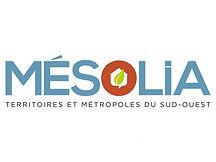 Mesolia-1024x768.jpg