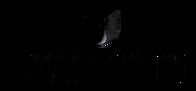 Swarovski_logo-700x325-removebg-preview.