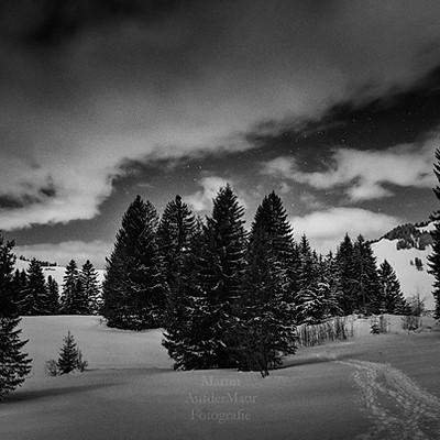Winternacht Wirzweli