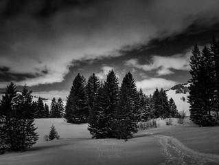 Winternacht im Wirzweli