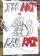 I'm Not a Lab Rat
