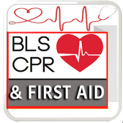 BLS- Hlth Care Prov/First Aid
