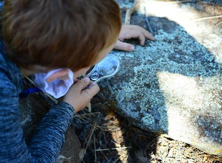 Prescott's Community Nature Center Comes Full Circle