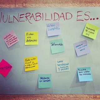 Vulnerabilidad Es.JPG