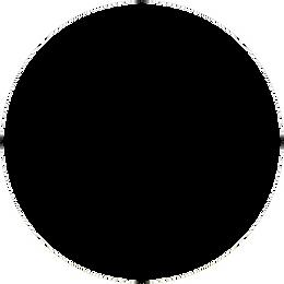 Circle Mask.png