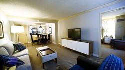 V Suite LR