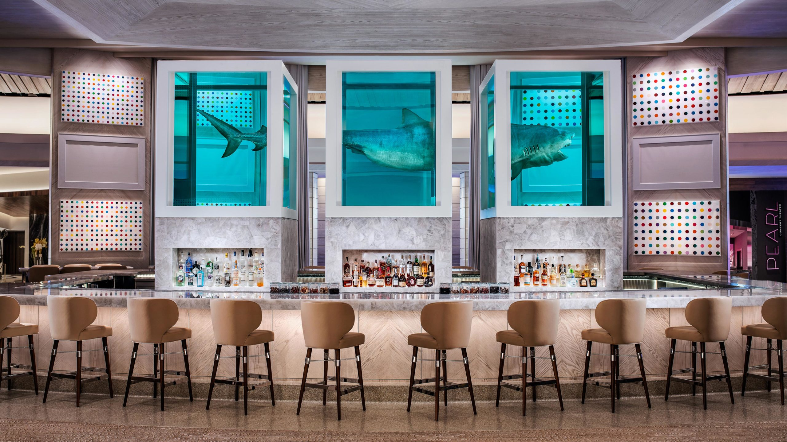 Shark Bar / Lounge
