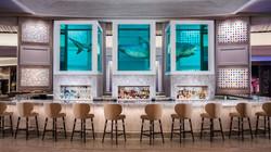 Shark Bar / Lounge