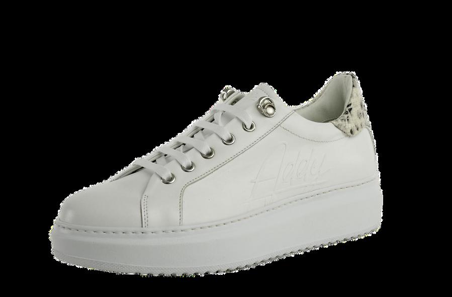 Drake Sneakers