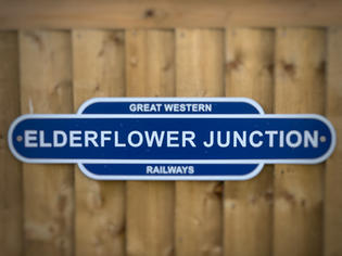 Elderflower junction.jpg