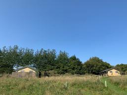 Safari tent field.jpg
