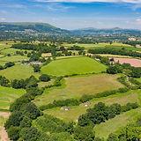 Medley Meadow