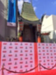 TCM red carpet.JPG