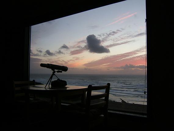 1 sunset sw sm
