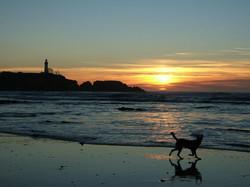 coco sunset sm