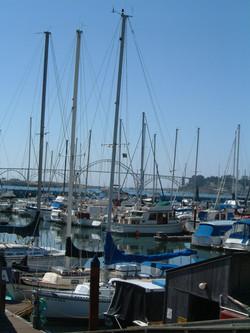 Yaq Bay boats