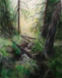 metsä.jpg