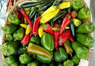 Hall Mixed Pepper Fix.jpg