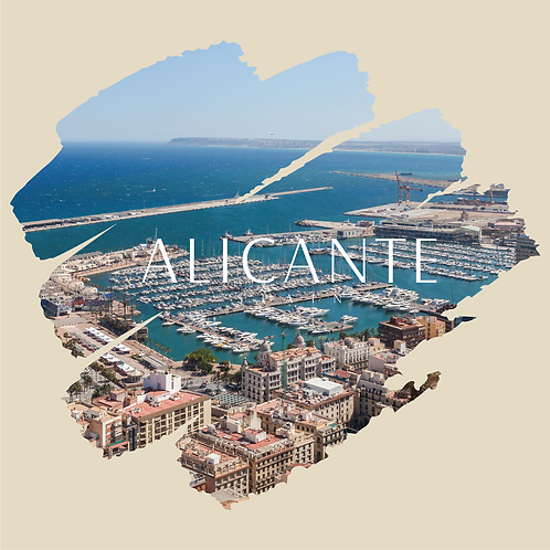 DISEÑOS ALICANTE 05