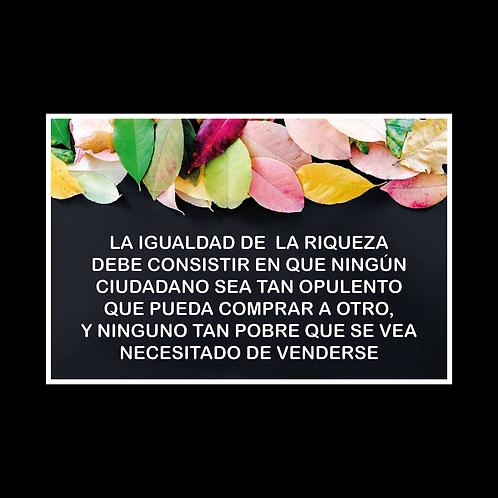 DISEÑOS DE REFRANES 081
