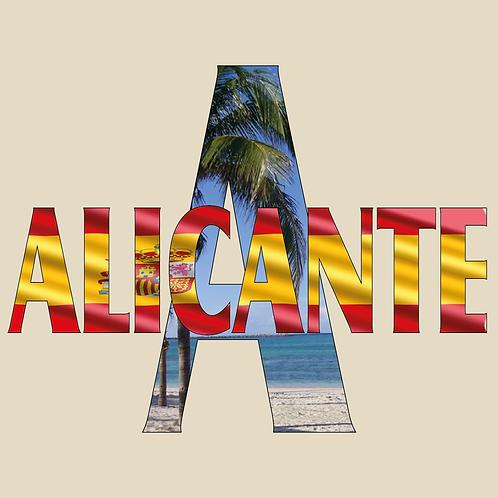 DISEÑOS ALICANTE 07