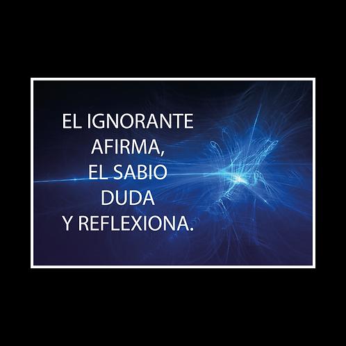 DISEÑOS DE REFRANES 041