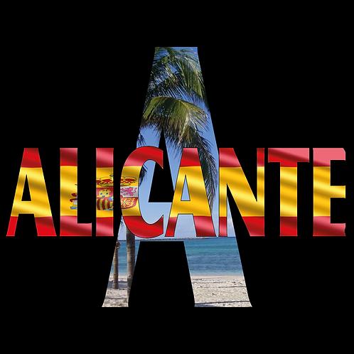 DISEÑOS ALICANTE 071