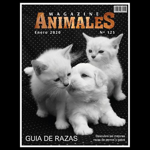 DISEÑO DE ANIMALES 051